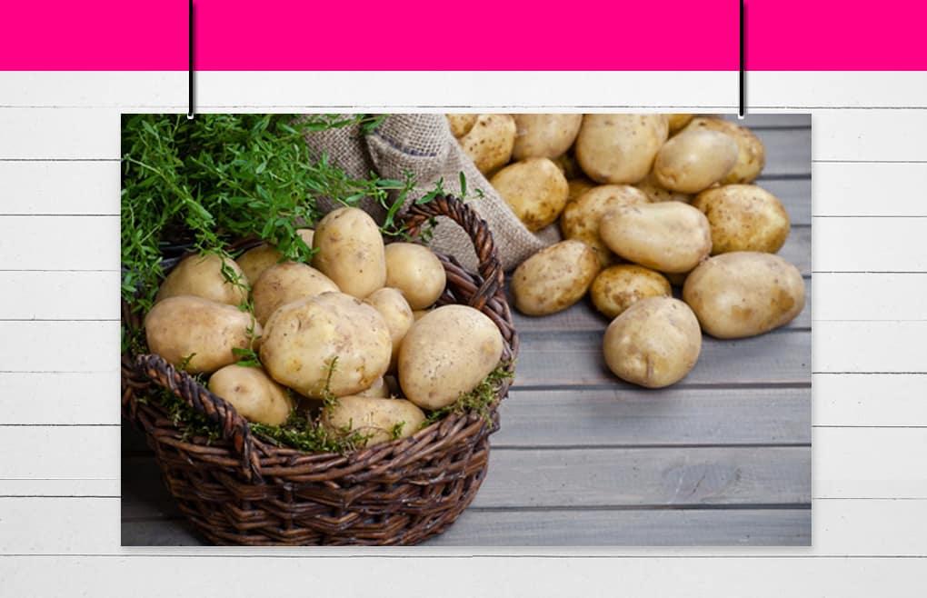 Famille des pommes de terre et apparentés
