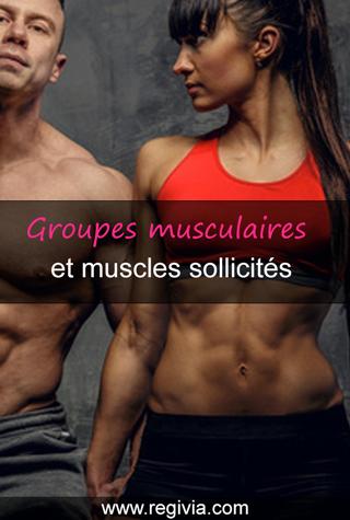 Quels sont les muscles utilisés pendant la marche rapide ou sportive ?
